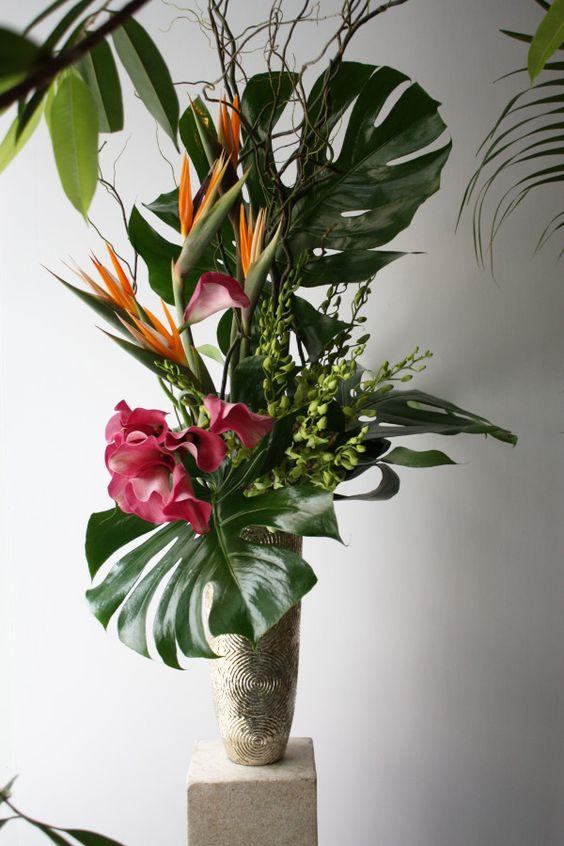 نگهداری گل استرلیتزیا یا پرنده بهشتی